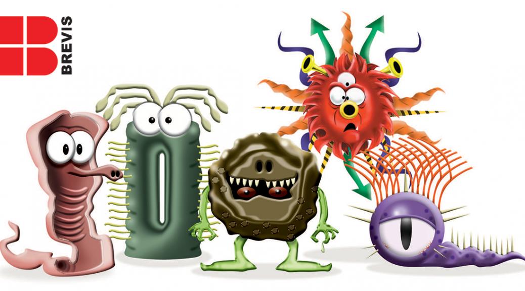 Brevis Germ Gang