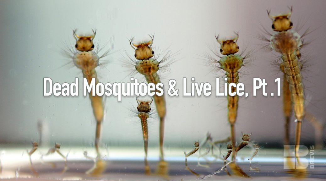 Dead Mosquitoes and Live Lice