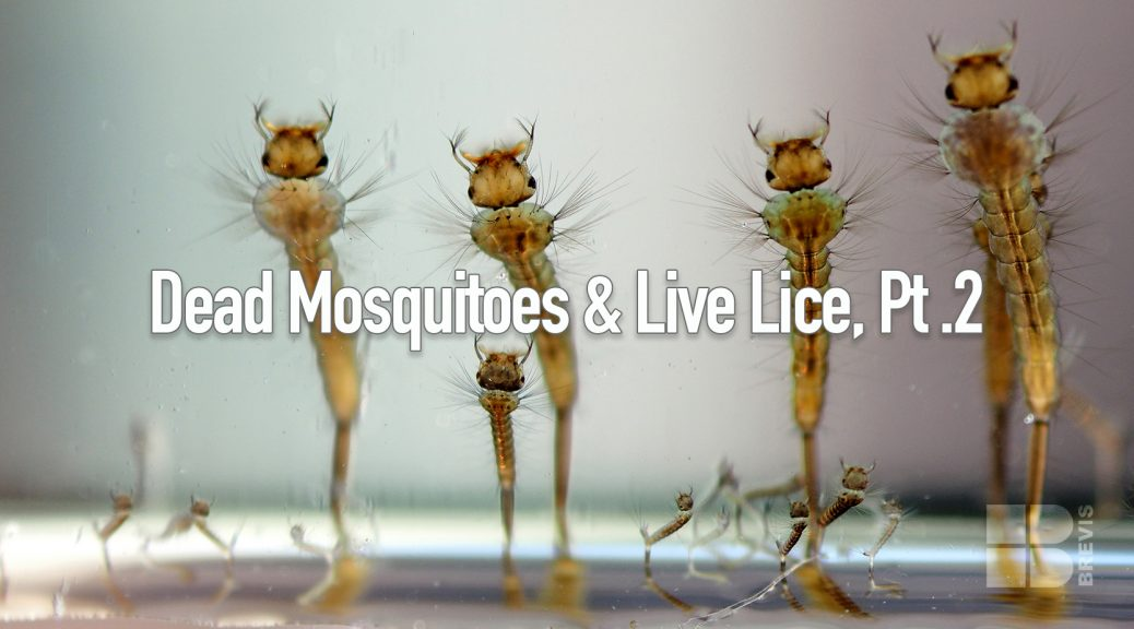 Dead Mosquitoes and Live Lice, Part 2