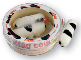 Bovine Spongiform Mad Cow Disease Mini Microbe Set