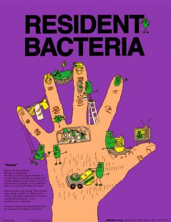 Resident Bacteria (front) Transient Bacteria (back) Poster